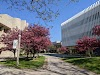 Image 8 of University of Toronto Mississauga Campus, Mississauga