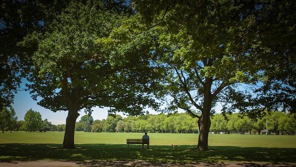 Popular tourist site North Hagley Park in Christchurch