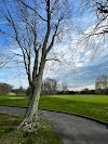 Image 6 of Tashua Knolls Golf Course, Trumbull