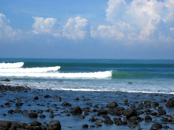 Popular tourist site Bali Surf Instructor in Canggu