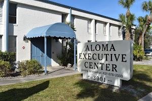 Aloma Executive Suites, Inc.