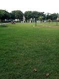 Sector 9A Park in gurugram - Gurgaon