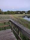 Image 7 of Larchmont Flint Park, Larchmont
