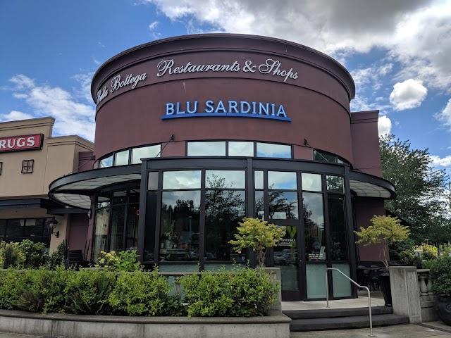 Blu Sardinia banner backdrop