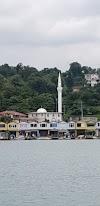 Image 2 of Hatuniye Cami, Pazar