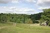 Image 4 of Ashley Wood Farm, Fonthill Gifford