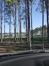 Image 4 of Northwest Recreation Complex, Apopka