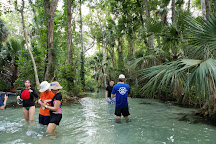 Get Up And Go Kayaking - Rock Springs, Apopka, United States