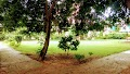 Triangular Park in gurugram - Gurgaon