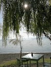 Image 4 of Parco La Pineta, Acquapendente