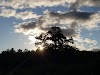 Image 3 of Minnechaug Mountain, Hampden