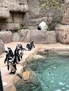 Image 8 of Dallas Zoo, Dallas