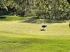 Image 4 of Hiddenbrooke Golf Course, Vallejo