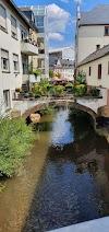 Image 7 of Pizzeria Da Rony, Saarburg
