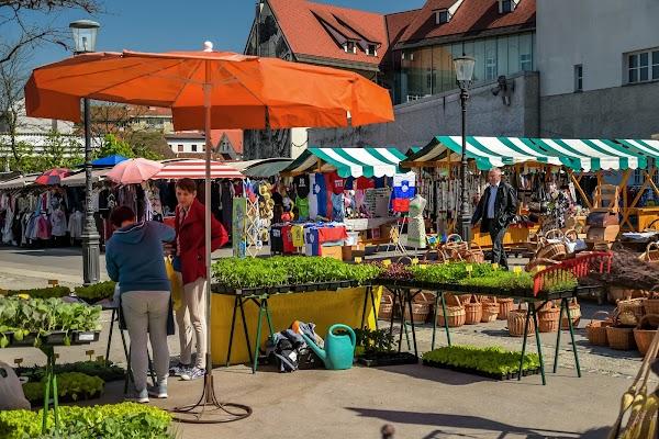 Popular tourist site Central market in Ljubljana
