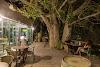 Image 7 of מלון עין גדי, עין גדי