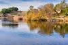 Image 6 of Foothills Park, Los Altos Hills