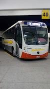 Image 4 of Central de Autobuses de Celaya, Celaya