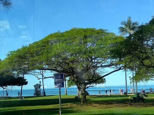 Popular tourist site Kapiʻolani Regional Park in Honolulu