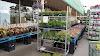 Image 6 of Joe Randazzo's Fruit Market, Redford