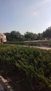 Image 7 of בית ספר מקיף ח', ראשון לציון