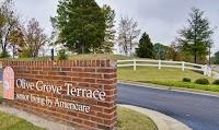 Olive Grove Terrace