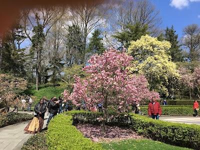Brooklyn Botanical Garden Parking - Find the Cheapest Street Parking and Parking Garage near Brooklyn Botanical Garden | SpotAngels