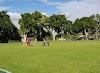 Image 7 of Cutler Ridge Park, Cutler Bay