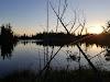 Image 5 of Mcgregor Point Provincial Park, Saugeen Shores