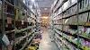 "Image 8 of Wholesale Warehouse ""S.O.V.A"", Kyiv"
