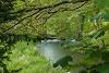 Image 6 of Ashley Wood Farm, Fonthill Gifford