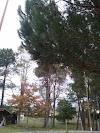 Image 4 of Spadium de Salles, Salles