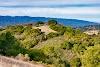 Image 5 of Foothills Park, Los Altos Hills