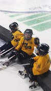 Image 8 of Champlin Ice Forum, Champlin