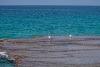 Image 1 of Promenade Rosh Hanikra, [missing %{city} value]