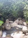 Image 5 of Sungai Batang Kali, [missing %{city} value]