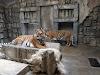 Image 8 of Tulsa Zoo, Tulsa