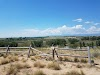 Image 5 of Sandstone Ranch Community Park, Longmont
