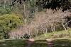 Image 8 of Fazenda Montanhas do Japi, [missing %{city} value]