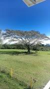 Image 7 of Vida Abundante Heredia, San Rafael