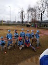 Image 4 of Ballard Park Baseball Sportsplex, Tupelo
