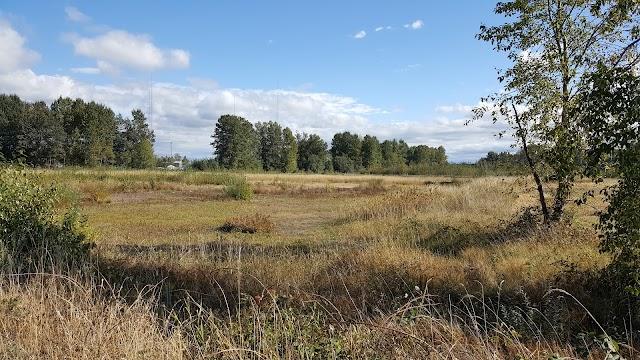 Gog-le-hi-te Wetlands image