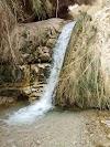Image 3 of Ein Gedi Reserve, Ein Gedi