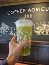 Image 8 of Starbucks, Schertz