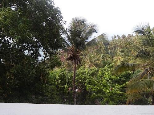 Ozeanic Caribbean Hotel Apartment