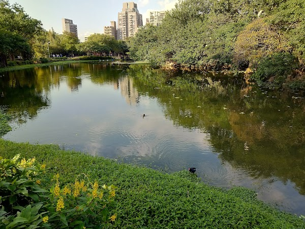 Popular tourist site Daan Forest Park in Taipei