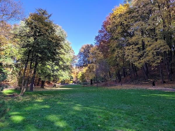 Popular tourist site Stryiskyi Park in Lviv