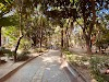 Image 1 of 忠孝公園, 高雄市新興區 Xinxing Dist., Kaohsiung City 800