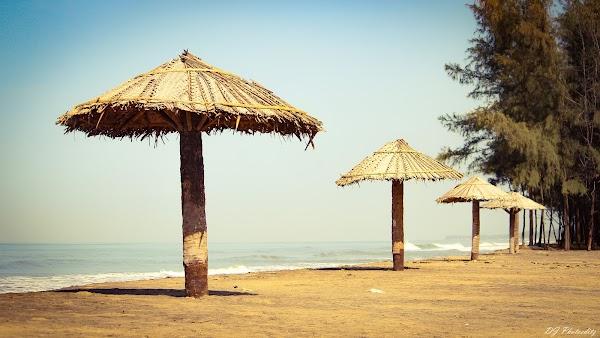 Popular tourist site Kuzhupilly Beach in Cochin