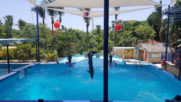 Popular tourist site Manati Park in Punta Cana